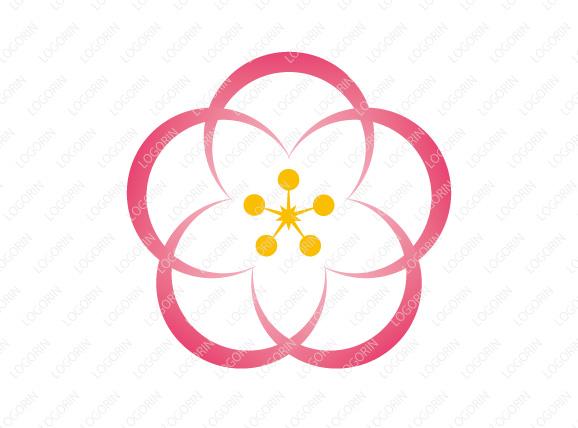 「梅」のシルエットに「蘭」のエッジを内包するロゴ